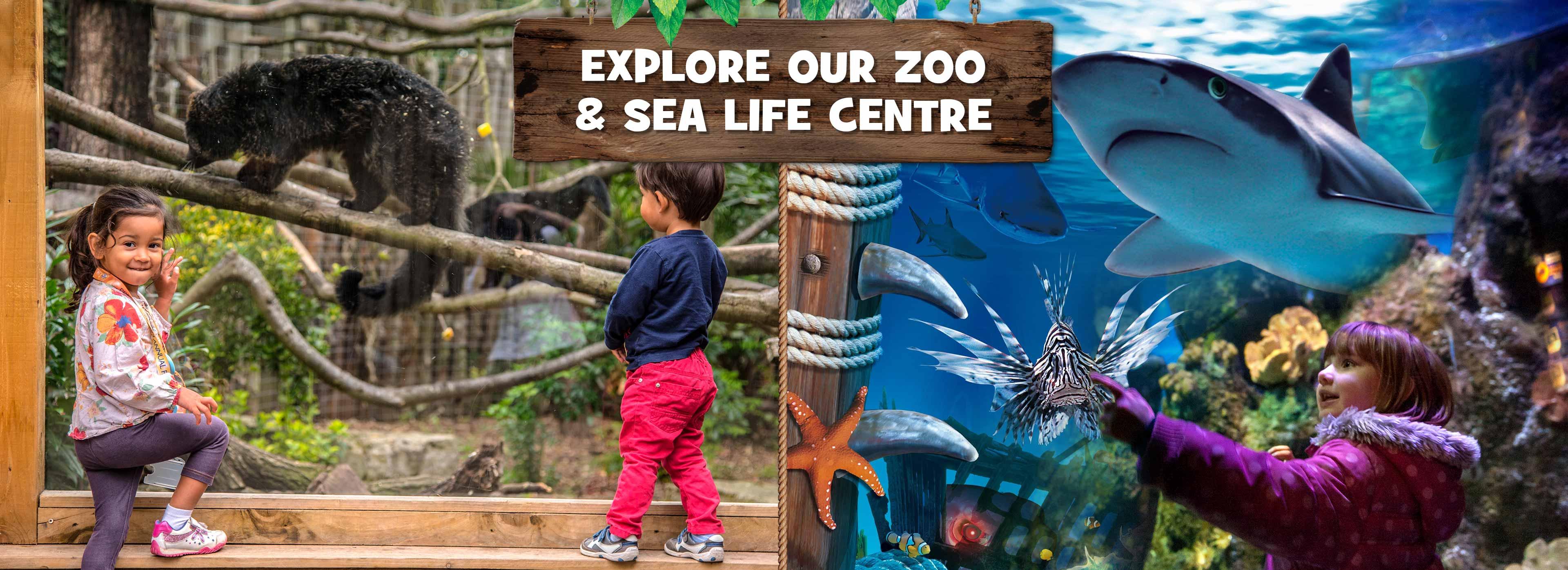 Chessington Zoo and SEA LIFE centre