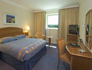 Gatwick Arora Hotel King Room