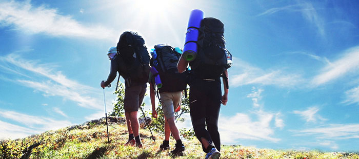 Group Travel Insurance Group of People Hiking
