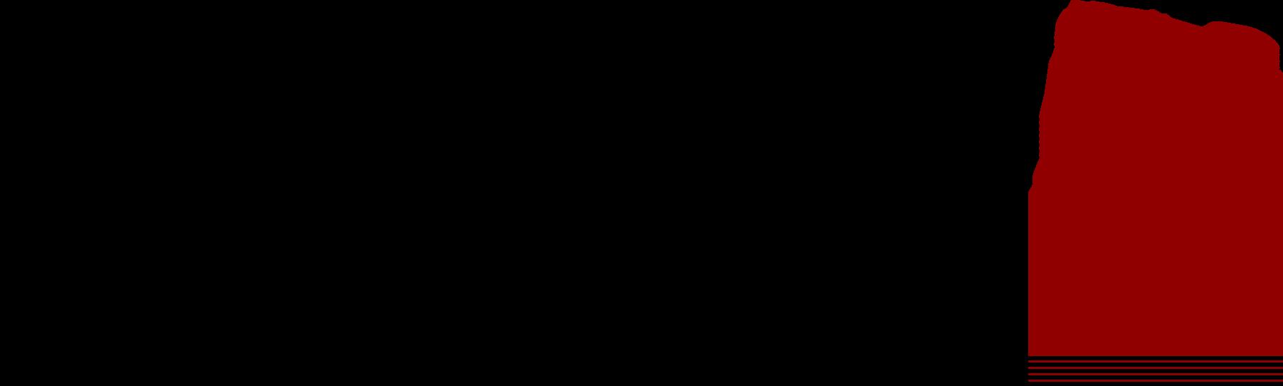 Logo Dragonpass